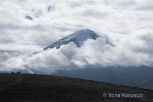 05_180203_DSC2425_Chimborazo
